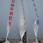 КНДР предупредила граждан о биологической опасности южнокорейских листовок