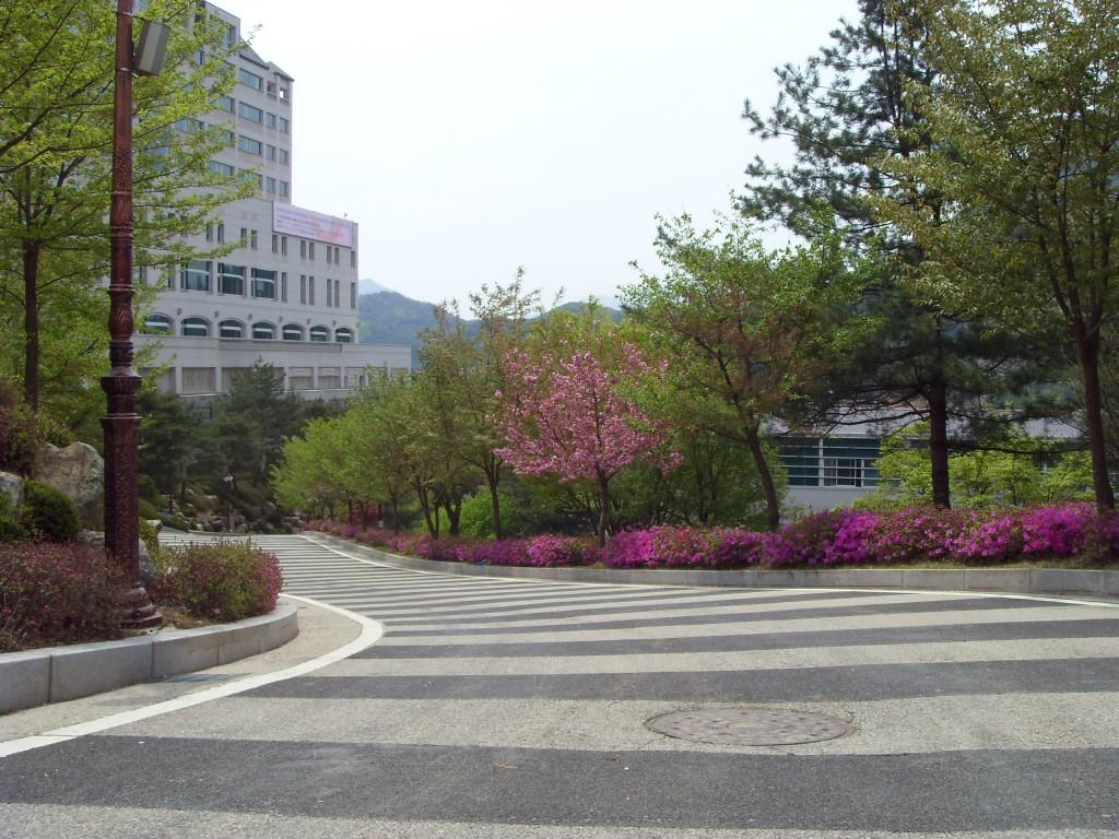 Лечение и обследование в Южной Корее