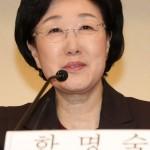 Хан Мён Сук озвучила программу Объединенной демократической партии