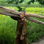 Около 16 млн жителей КНДР нуждаются в гуманитарной помощи