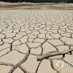 Жителей КНДР призвали искать новые источники воды из-за рекордной засухи
