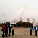 Воздушные шары с листовками запущены в сторону КНДР из Южной Кореи