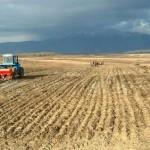 Несколько районов КНДР поразила сильнейшая засуха
