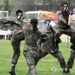 Южная Корея и США создают дивизию для борьбы с оружием массового поражения КНДР