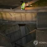 В пригороде Сеула на концерте погибли 16 человек