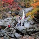 Напряженная обстановка на Корейском полуострове не отпугнула зарубежных туристов от поездок в КНДР