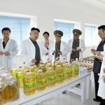 В КНДР открыт первый завод по производству витамина С