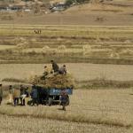 На оказание гуманитарной помощи КНДР у ООН не хватает почти 100 млн долларов