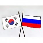 Замглавы российской делегации на шестисторонних переговорах прибыл Сеул